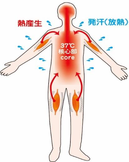 身体を温める健康
