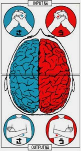 人の脳の癖