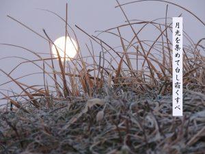 霜降冷え対策