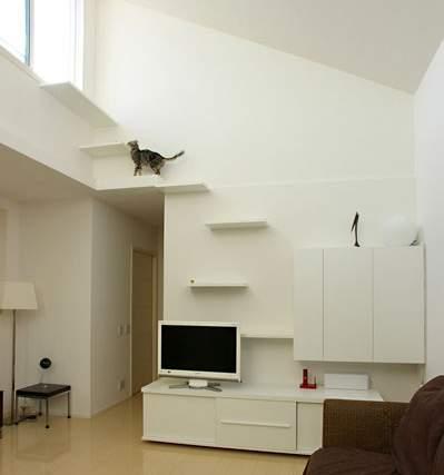 練馬の猫用階段