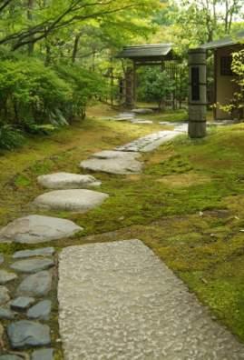 茶庭 山寺への道